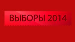 выборы-2014f