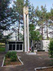 Рабочий визит первого секретаря Амурского обкома в Серышевский район